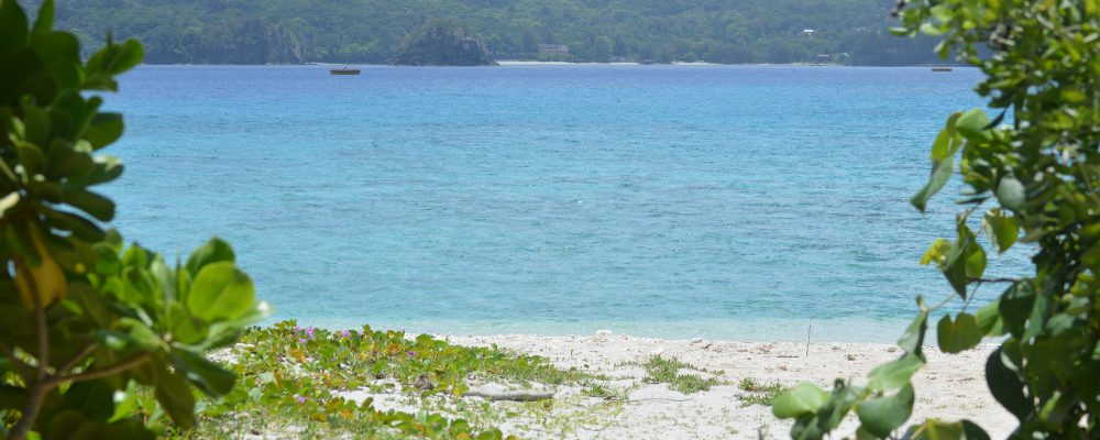 東京都小笠原村立小笠原小学校は都内から南へ約1000kmに位置する小笠原諸島の父島に唯一ある小学校です。